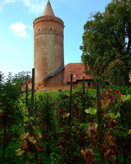 Herbst auf der Burg Stargard